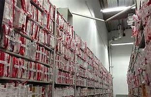 backlog rape kits