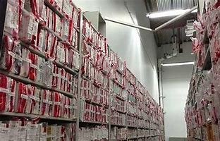 backlog rape kits